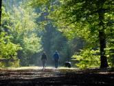 Eindelijk uitgeklaard: tien minuten bewegen per week heeft al een positief effect op onze gezondheid