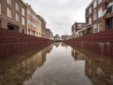 Partij voor de Dieren wil Jansbeek zonder goudvissen