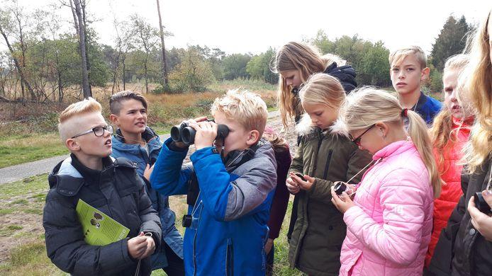 Veldles in de Maashorst: terwijl een jongen door een verrekijker naar  taurosstieren tuurt, prutsen anderen met hun veldloep.