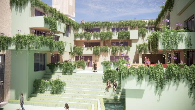 Schijndel volgt Babylon met hangende tuinen, slapen kan straks in kubus op het dak