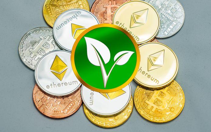 Le logo Vitae, montrant les feuilles d'une plante