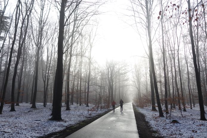 Het was heerlijk voor joggers om hard te lopen op de Witteweg in het bos nabij Nijmegen. 'De weg was deze keer niet wit, maar eromheen wel', schrijft Wilma Coehoorn