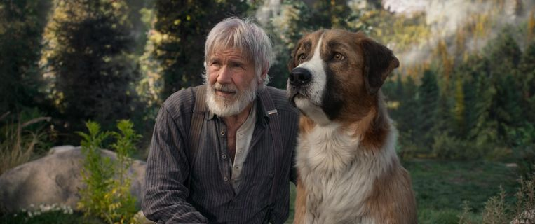 Harrison Ford  The Call of the Wild (2020)   Beeld Photo News
