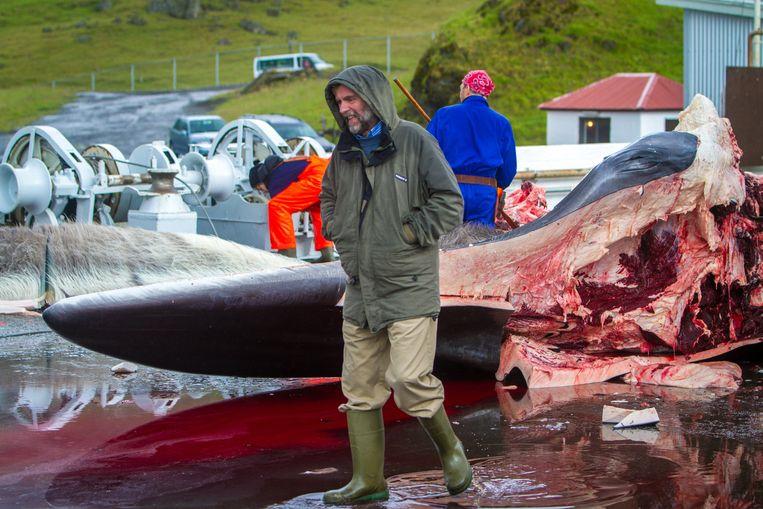 Kristjan Loftsson, walvisjager én een van de rijkste mannen in IJsland.