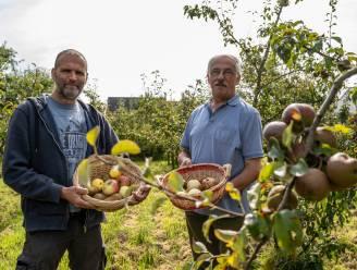"""Vrienden geven verwilderde fruitsoorten nieuw leven: """"Sommige waren zelfs bijna uitgestorven"""""""