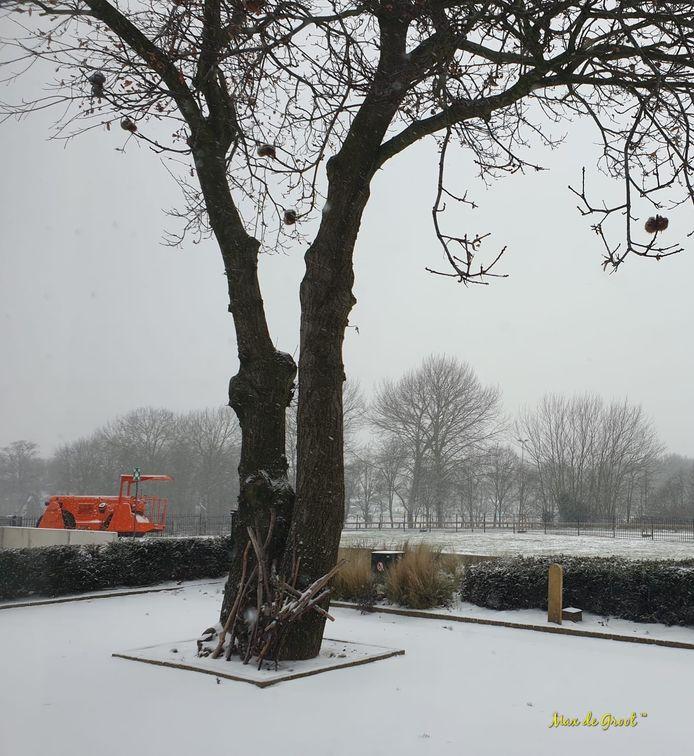Sneeuw op de grens van Limburg en Gelderland.