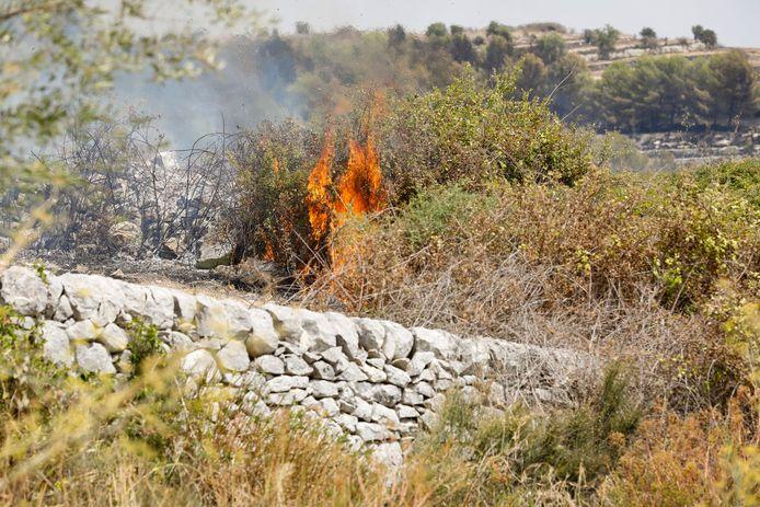 Archiefbeeld 12 augustus 2021: bosbranden in de regio rond Sicilië, in het zuiden van Italië.