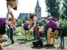 Corso & Co wint dit jaar stilstaand corso in Winterswijk: 'Toch nog iets beleven'