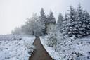 U leest het goed, dit is eind mei 2013. Op de Hoge Venen viel toen nog 3 centimeter sneeuw.