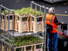 Groei landbouwexport stagneert