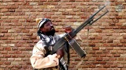 Duitsland houdt mogelijk lid Boko Haram aan