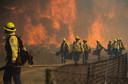 Op de flanken van de Tafelberg in Zuid-Afrika woedt al de hele dag een hevige natuurbrand. Harde wind bemoeilijkt het blussen.