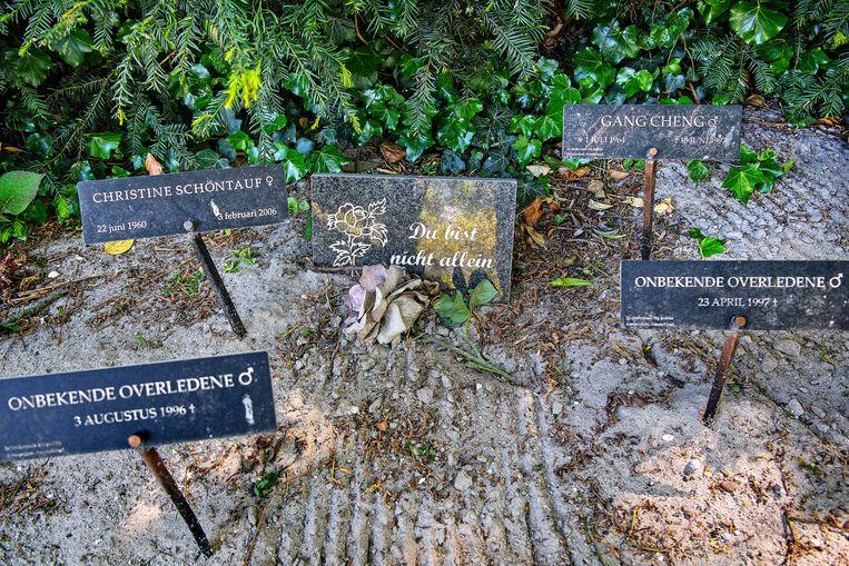 Op de begraafplaats St. Barbara in Amsterdam. Beeld Guus Dubbelman / de Volkskrant