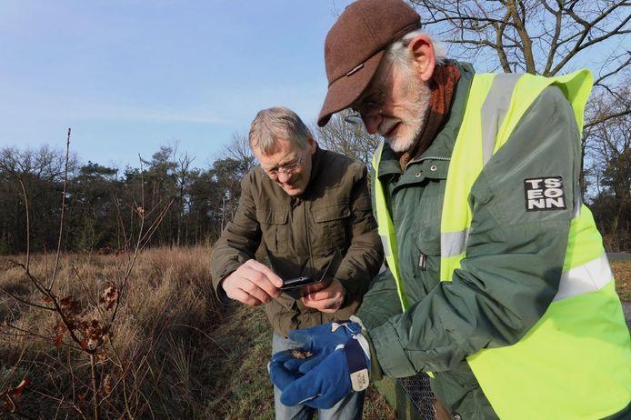 De padden- en kikkerredders van IVN Asten-Someren: Wim Steenbakkers (links) fotografeert een heikikker die Jo van Zanten veilig naar de overkant van de weg brengt.