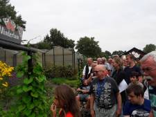Meeshoeve Oud Gastel breidt weer uit en krijgt vlindertuin
