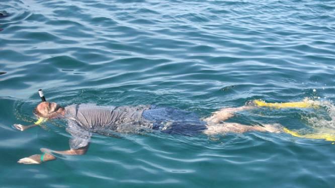 Snorkelaar (25) ernstig verwond door haai aan Great Barrier Reef
