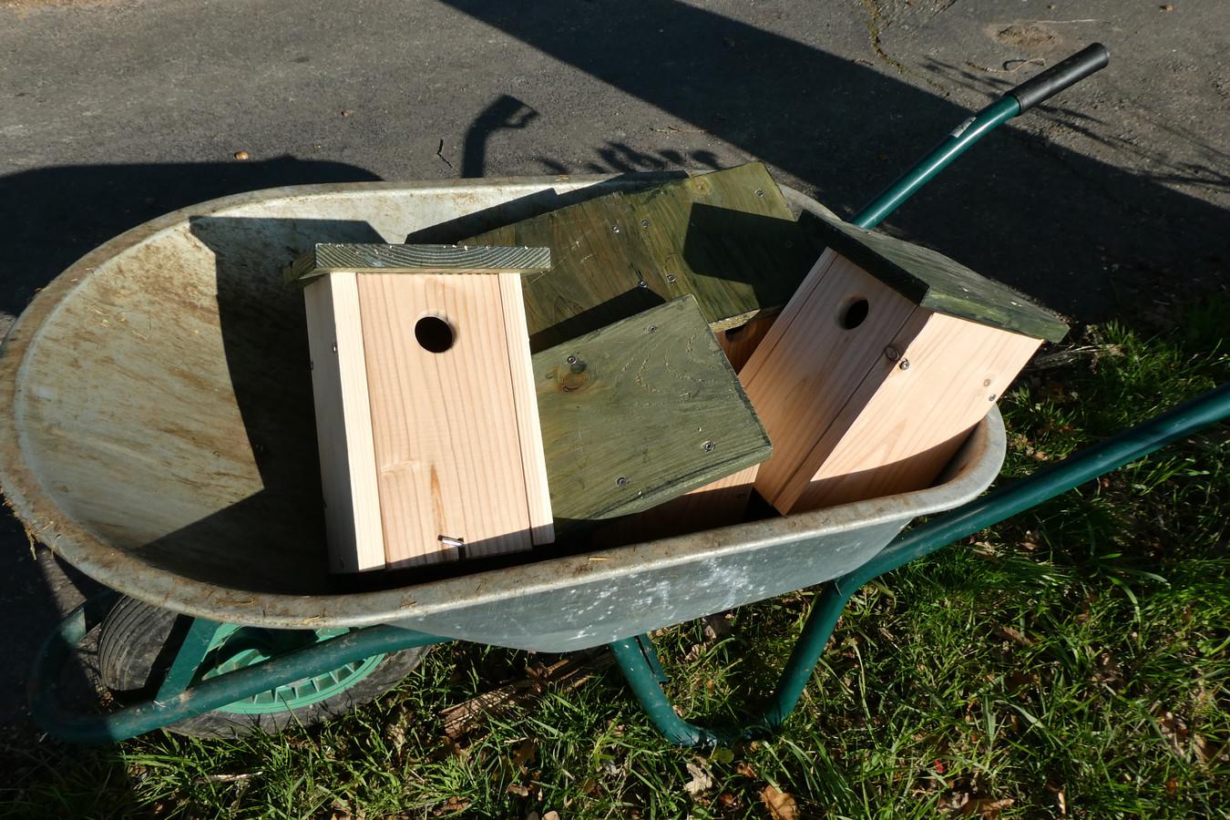 Kruiwagens vol nestkasten worden naar de eiken gebracht aan de Molenhoek. Nieuwe huisjes voor de koolmees.