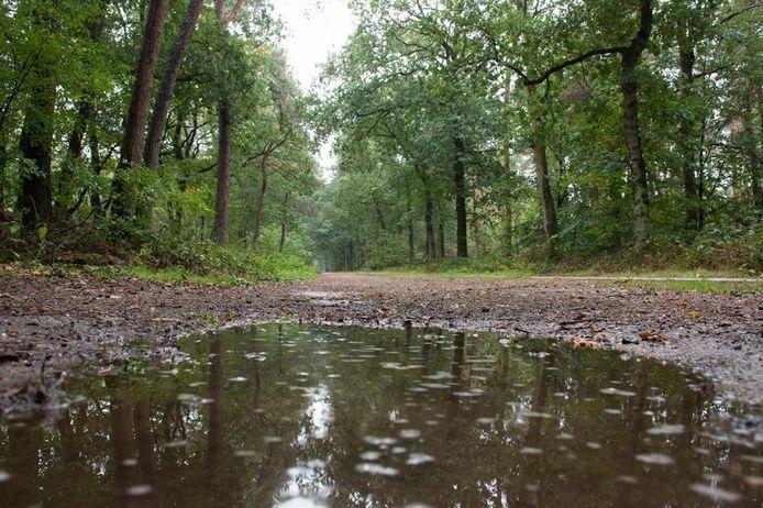 Weerplaza/emke Straten, Heilig Landstichting Gelderland Nederland