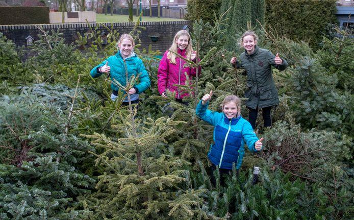 Marit, Hannah, Rianne en Esmeé (van links naar rechts) hebben 157 kerstbomen ingezameld.