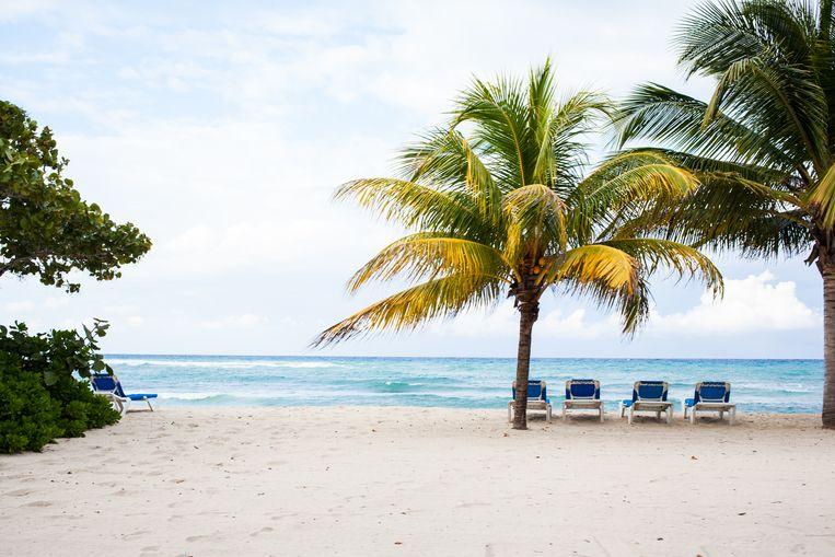 Palmbomen, blauwe oceaan, prachtig strand? Ideaal om onder invloed van wat rum op avontuur te gaan. Beeld Ringo Gomez Jorge