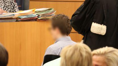 Celstraf van twee jaar met zes maanden uitstel na dodelijk ongeval op E17