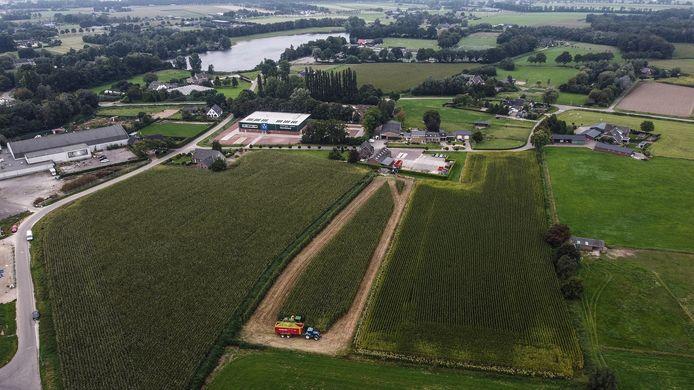 Loonwerkbedrijf Eugelink werkt zich momenteel een slag in de rondte om het snijmais er voor 1 oktober van het land te halen.