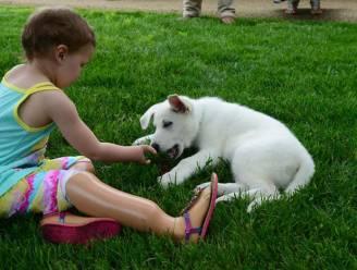 """Peuter met protheses krijgt puppy die poot mist: """"Kijk, hij heeft een voetje zoals ik"""""""
