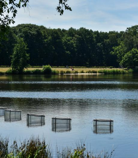 Waterschap stopt met bijvullen Waalwijkse sloten; waterstand Lido te laag