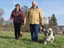 Actie voor hondenspeelweide in Sas van Gent slaat aan, 'honden moeten er even hond kunnen zijn'