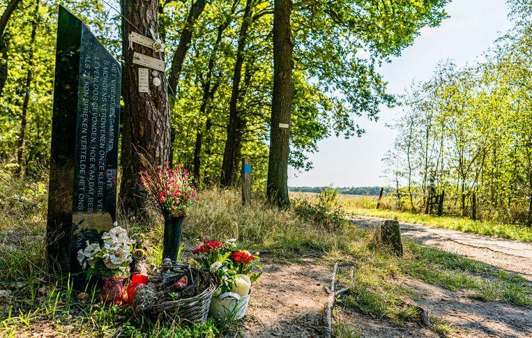 Het monument voor Nicky Verstappen op de Brunssummerheide. Beeld Freek van den Bergh / de Volkskrant