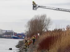 91-jarige man komt om het leven nadat hij met auto te water raakt in Zwijndrecht