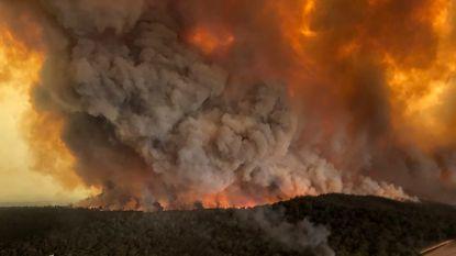 Rook van Australische bosbranden maakte 400 slachtoffers