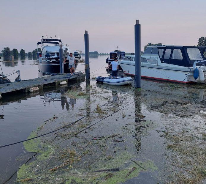 Tot zonsondergang waren leden van Watersportvereniging Genderen dinsdagavond bezig met het wegscheppen van het hooi. En ook vandaag wordt er nog hard gewerkt.