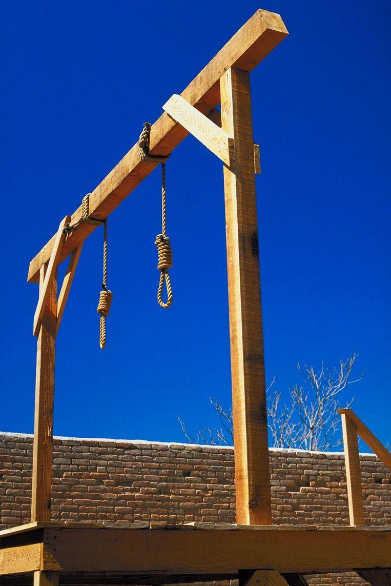 Het aantal doodstraffen en executies is vorig jaar gedaald. Dat blijkt uit het jaarlijks doodstrafrapport van mensenrechtenorganisatie Amnesty International. Wereldwijd zitten nog minstens 21.919 mensen in de dodencel.