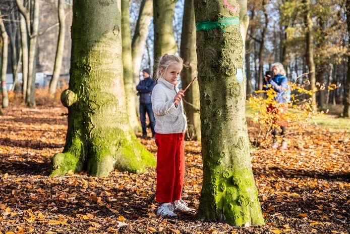 Rosalie Bosch schildert een hart op een van de gemarkeerde bomen in Park Klarenbeek