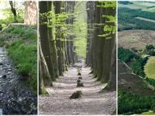 Mander: lopen in cirkels, over de Galgenberg en door het dal
