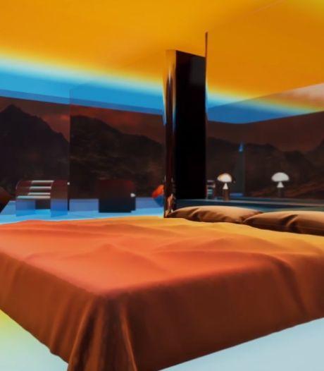 Une maison virtuelle adjugée... 500.000 dollars
