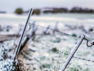 Zo wit was de lente al een tijdje niet meer...