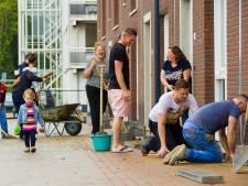 Straat krijgt 1000 euro voor aanleggen geveltuintjes: een beetje groen in negen piepkleine tuintjes