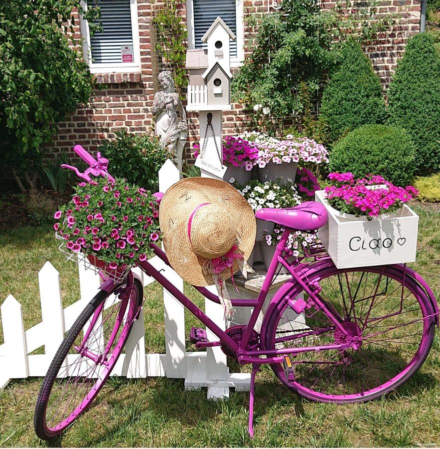 Het project wil bewoners van de cité stimuleren om oude fietsen op te fleuren, te versieren, een creatieve look te geven en deze in de voortuin, op het terras of op de stoep te plaatsen.