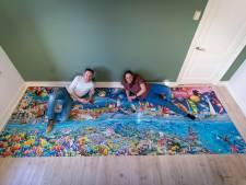 Lekker de coronatijd door met een puzzel van 24.000 stukjes; Velps stel wist zich een jaar lang goed bezig te houden