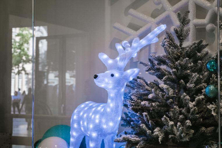Stilleven met kerstboom en lichtgevend rendier. De Stadsfeestzaal is klaar voor Kerstmis. Beeld Wouter Van Vooren