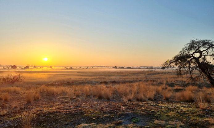 De zon komt op boven de Strabrechtse Heide.