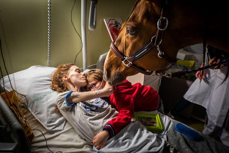 De Française Manon heeft uitgezaaide kanker. Haar zoontje en het paard Peyo brengen troost. De hengst heeft een unieke connectie met zieken en bezoekt hen geregeld. (Jeremy Lempin) Beeld Jeremy Lempin