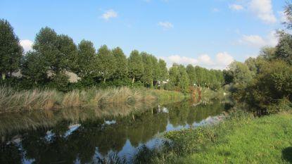 """Wielsbeke wil Oude Leiearm nog altijd dempen: """"We compenseren natuur iets verderop"""""""
