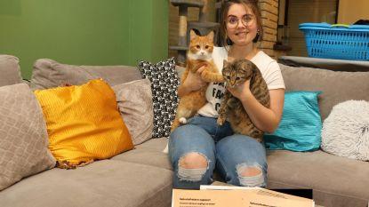 Babette (25) wil kattendoder voor de rechter