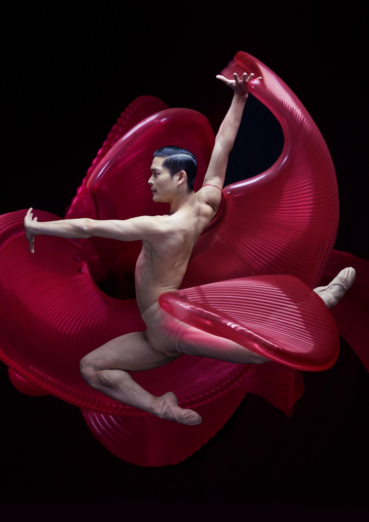 Young Gyu Choi van Het Nationale Ballet  Beeld Bart Hess