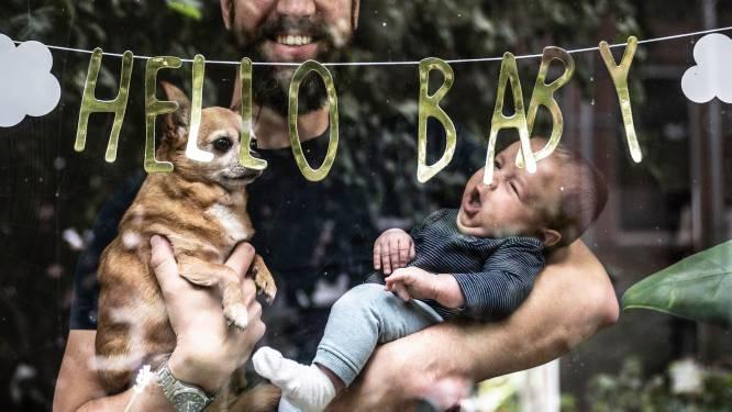 Er worden zoveel kinderen geboren dat de kraamhulp nog nauwelijks tijd heeft: sprake van een babyboom?