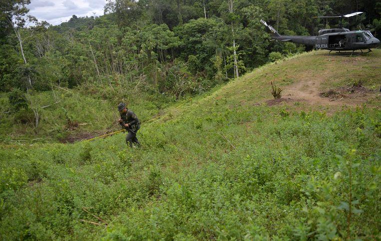 Colombiaanse agenten op weg naar een cocaplantage. Beeld Hollandse Hoogte / AFP