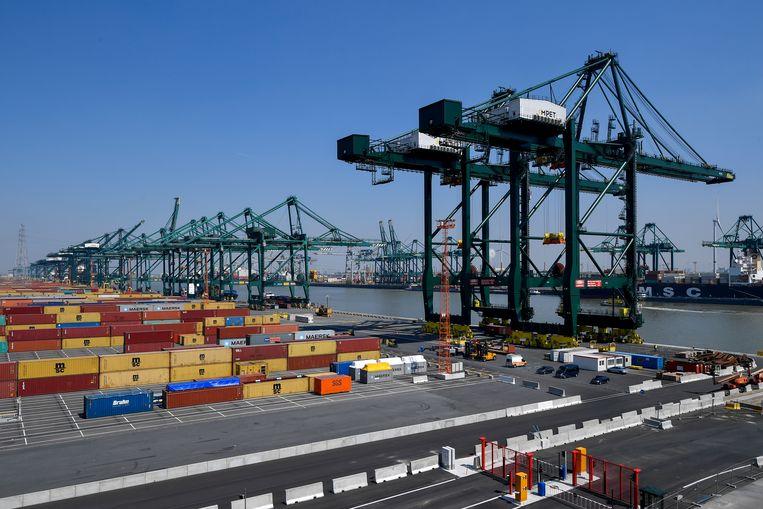 Aan de Schelde worden per jaar vijftien miljoen containers verwerkt. Er is geen zicht op wie met welke achtergrond de afgeschermde kaaiomgeving betreedt.   Beeld BELGA